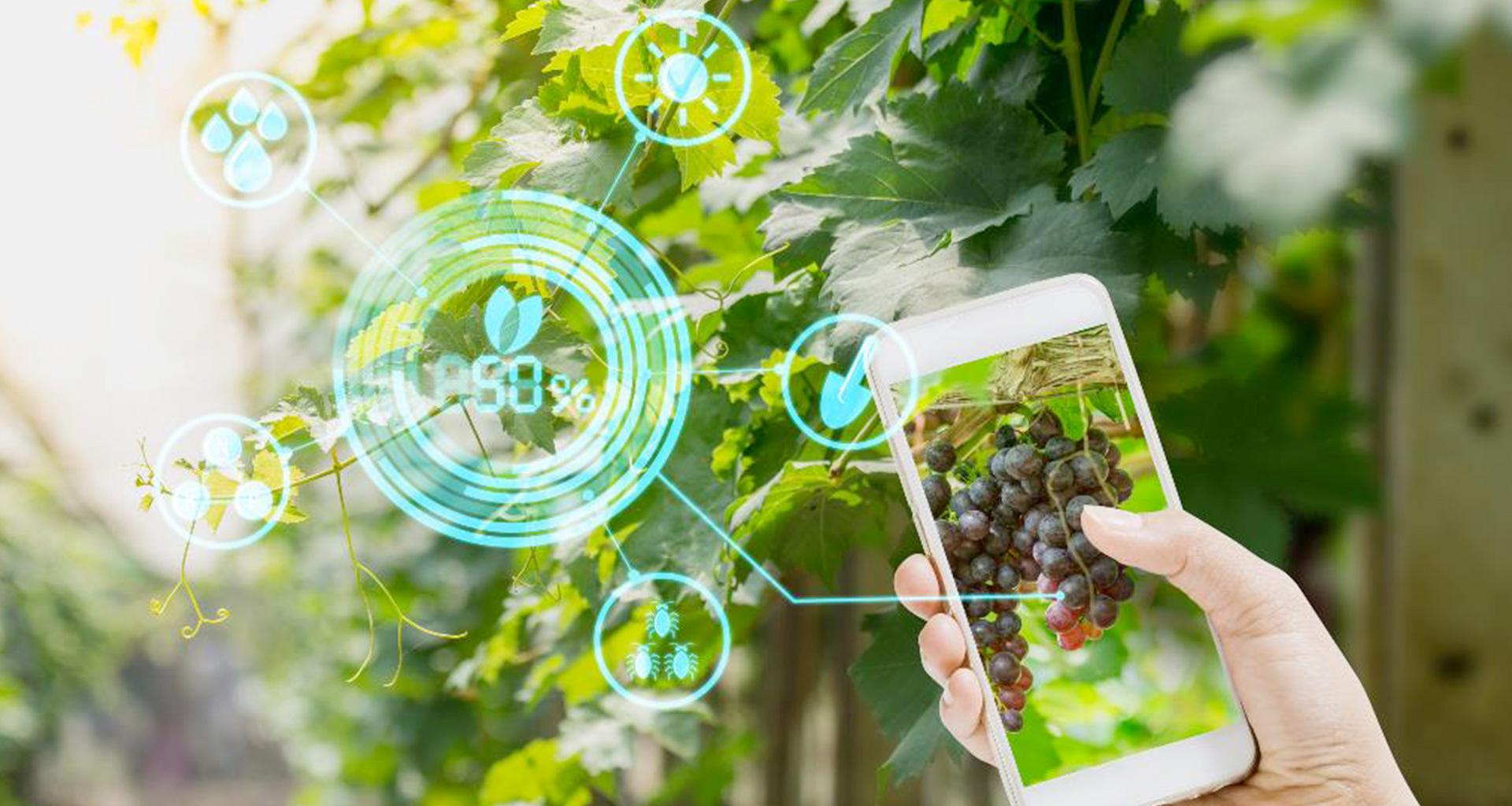 L'agricoltura 4.0 su del 270%